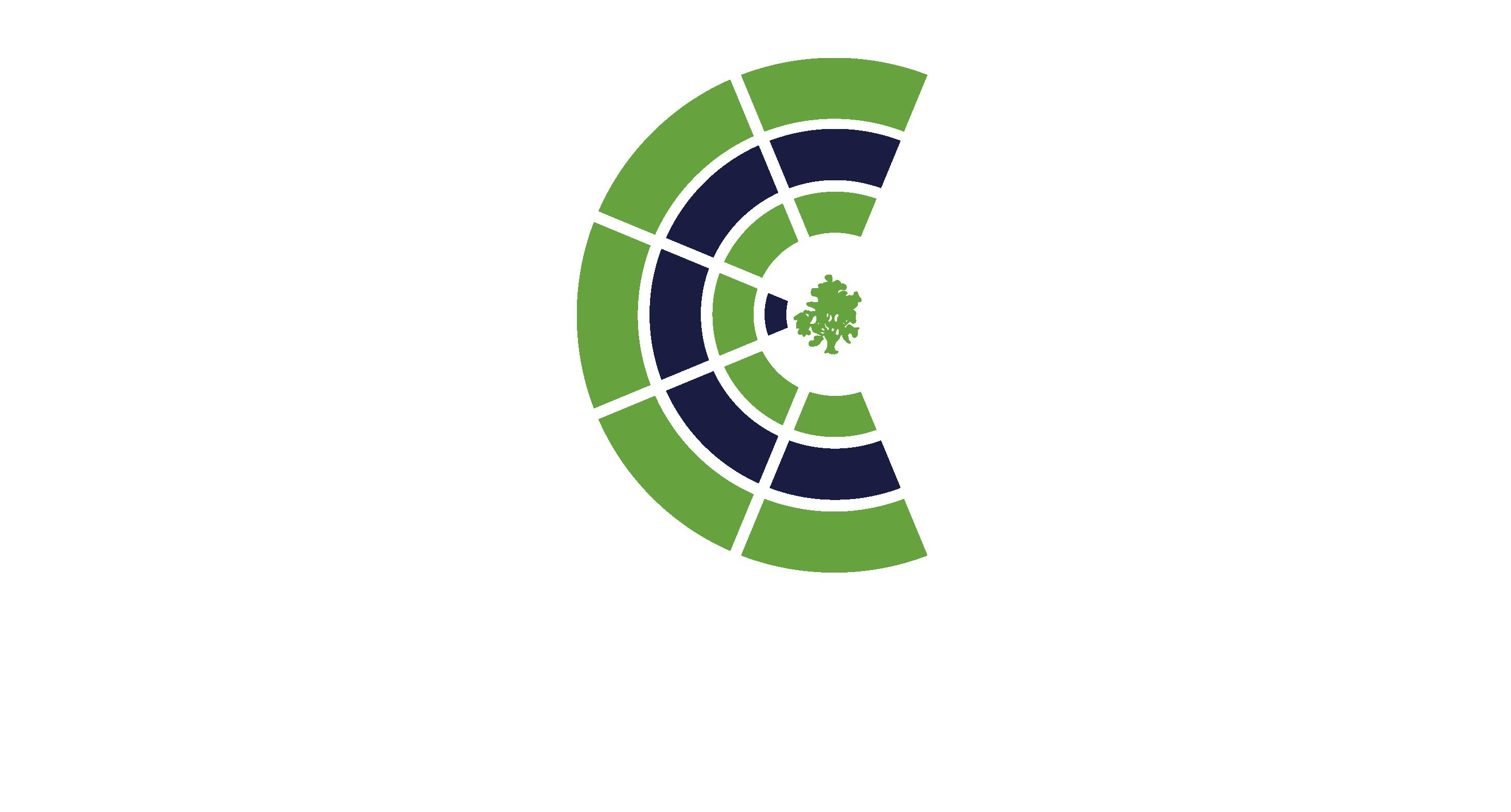 HCD Coronel Suárez